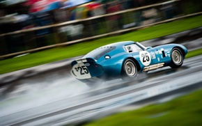 Wallpaper Shelby, Coupe, Cobra, Snake, Daytona, Shelby Cobra Daytona Coupe, Goodwood Revival, Tom Kristensen, 2011