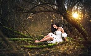 Picture forest, girl, dress, legs, Marketa Novak