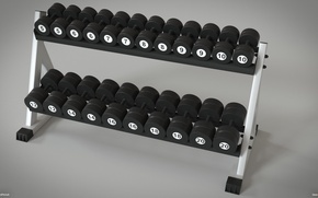 Picture hall, iron, bodybuilding, fitness, dumbbells, simulators, dumbbell, dumbbell row