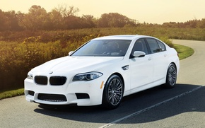 Picture road, white, background, tuning, BMW, BMW, sedan, the bushes, tuning, the front, IND