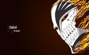 Picture fire, anime, Bleach, Bleach Hollow mask, Control The Instinct, mask Ichigo