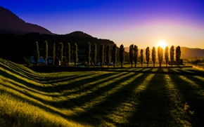 Wallpaper Austria, trees, shadows, Nenzing, The Villach, Austria, lawn, the sun, the sky, grass, landscape, sunset
