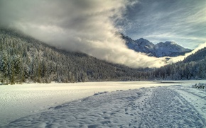 Picture road, forest, the sky, snow, fog, river, mountain
