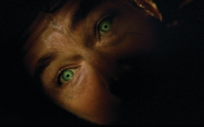 Picture eyes, male, Hulk