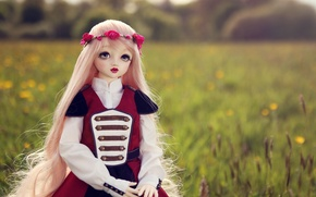 Picture field, nature, toy, doll, blonde, wreath, long hair