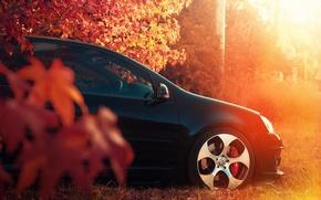 Picture machine, Autumn, Golf