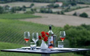 Picture flowers, table, wine, glasses, nature