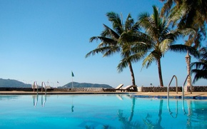 Picture landscape, palm trees, pool
