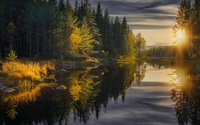 Picture autumn, forest, trees, reflection, river, the rays of the sun, Jorn Allan Pedersen