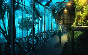 Picture girl, flowers, plants, anime, art, nauimusuka