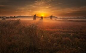 Picture the sun, light, sunset, mill, Netherlands