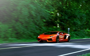 Picture road, trees, orange, speed, blur, lamborghini, orange, aventador, lp700-4, Lamborghini, aventador