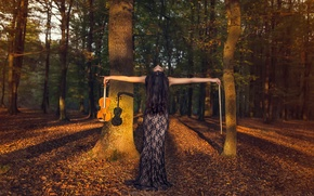 Picture autumn, forest, violin, bow, violinist