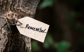 Picture tree, rope, trunk, note, reminder, the word, remember