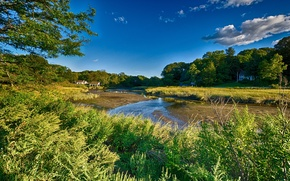 Picture the sky, grass, clouds, trees, landscape, house, river, new york, long island