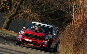 Picture autumn, Red, Sport, Mini Cooper, WRC, Rally, MINI, Mini Cooper