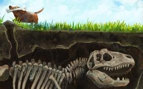 Picture grass, earth, dinosaur, dog, art, skeleton, bone