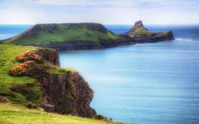 Picture sea, greens, grass, open, shore