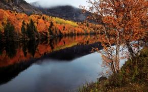 Picture autumn, river, Canada, Humber River, Newfoundland and Labrador