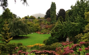 Picture greens, grass, trees, flowers, glade, garden, Canada, the bushes, Vancouver, Of Discharge Nozzles Gardens