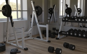 Picture Sport, Drives, Rod, Fitness, Grif, Pancakes, Bodybuilding, Bodybuilding, Damn, Weight, Shell, Simulators, Gym