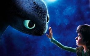 Picture Hiccup, Toothless, How to train your dragon
