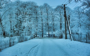Picture winter, road, snow, trees, landscape, wire