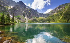 Picture forest, mountains, nature, mountain lake