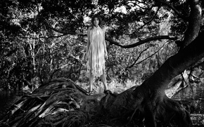 Picture forest, trees, roots, photoshoot, Meghan Collison, Meghan Collison, Intermission