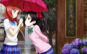 Picture girls, rain, umbrella, anime, art, Schoolgirls, yazawa nico, love live! school idol project, nishikino maki, …