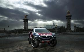 Picture 2008, Peugeot, Peugeot, DKR