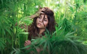 Picture greens, look, portrait, curl, Inja Zalta