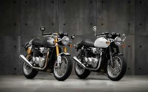 Picture moto, bike, classic, british, Triumph, 2016, Thruxton