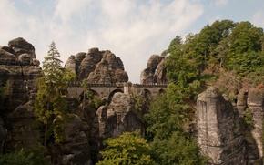Picture trees, bridge, the city, photo, rocks, Germany, Lohmen