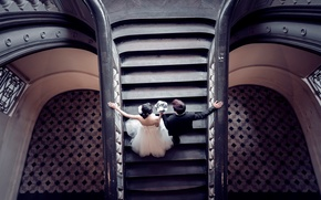 Picture dress, costume, ladder, lovers, the bride, hall, the groom