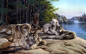 Wallpaper pack, wolves, painting, river, Al Agnew