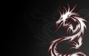 Picture grey, dragon, tattoo