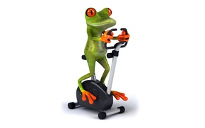 Picture frog, frog, funny