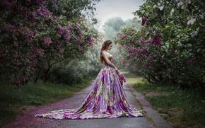 Wallpaper summer, girl, lilac