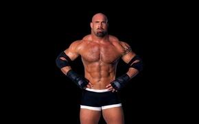 Picture tattoo, bald, actor, actor, wrestler, tattoo, press, WWE, wrestling, press, bill goldberg, Bill Goldberg, Bill …