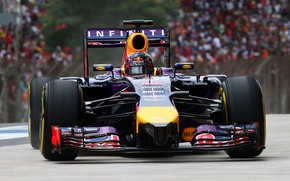 Picture Background, Formula 1, Red Bull, Vettel, FAS