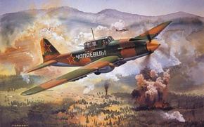 Picture USSR, attack, Il-2, roy cross
