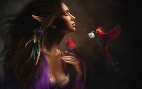 Picture flower, girl, birds, mood, elf, feathers