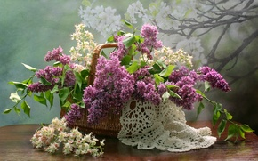 Picture basket, lilac, napkin, chestnut, composition