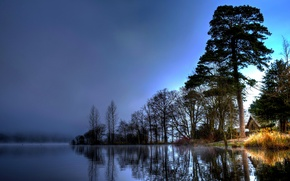 Picture trees, fog, house, river, morning
