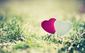Picture greens, grass, the sun, love, landscape, nature, pink, heart, beautiful, hearts, full screen, HD wallpapers, …