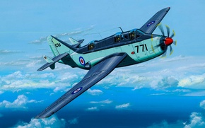 Picture art, airplane, painting, aviation, Fairey Gannet