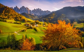 Wallpaper forest, valley, village, autumn, trees, Italy, Church, mountains, Alps