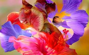 Picture line, flowers, abstraction, paint, petals