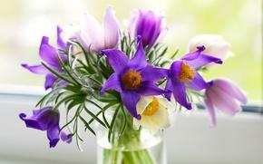 Picture flowers, bouquet, purple, vase, pink, cross, Pulsatílla